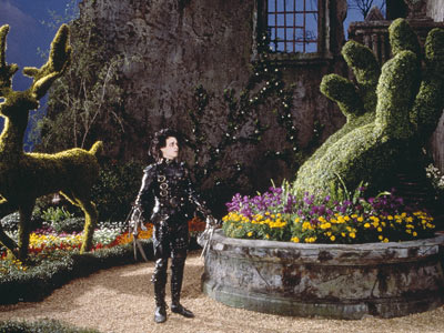 edward-scissorhands_l